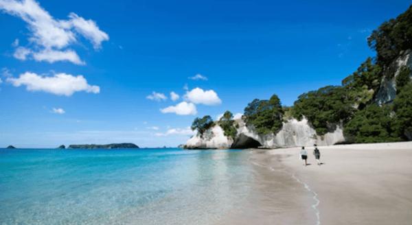 New Zealand beach scene